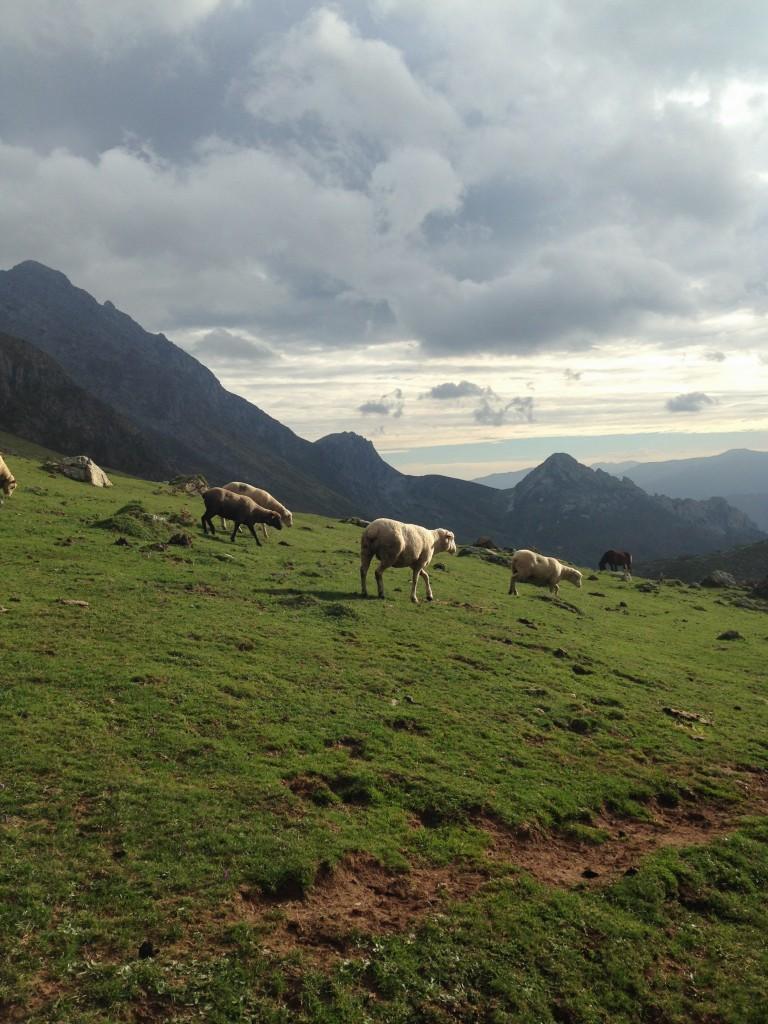 Las Ubiñas, Asturias